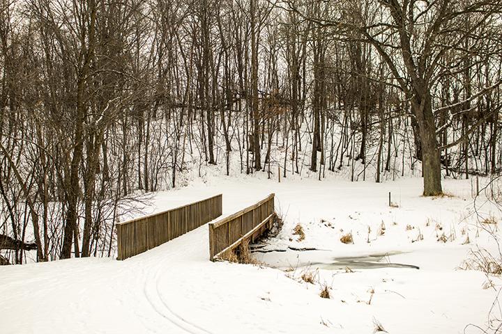 Robert Ney Memorial Park Reserve