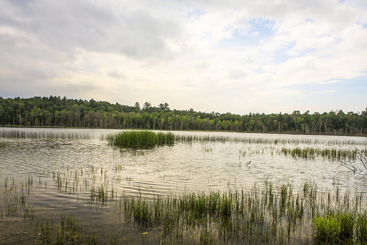 Greenwater Lake SNA