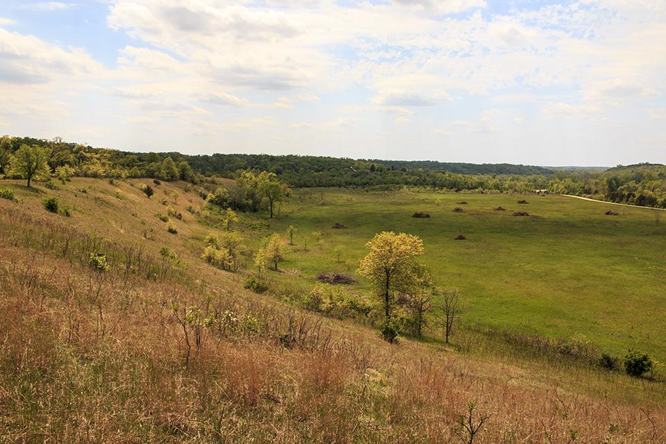 River Terrace Prairie SNA