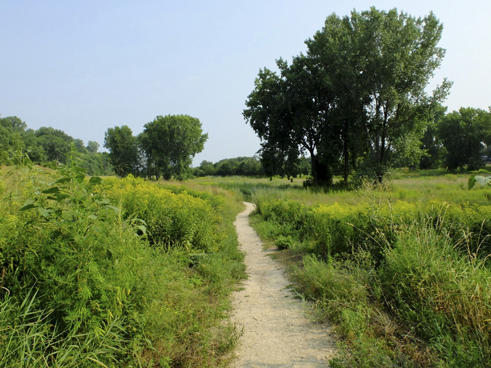 Bruce Vento Nature Sanctuary